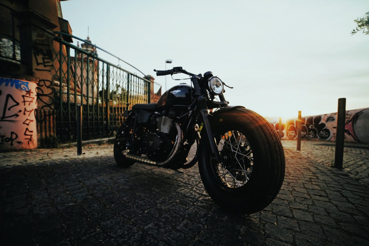 "Triumph T100 ""Leonor"" by Unik Edition"